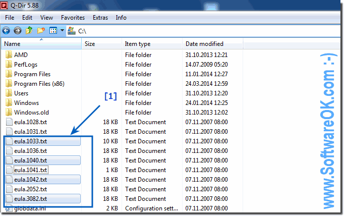 Select non adjacent files with help of CTRL!